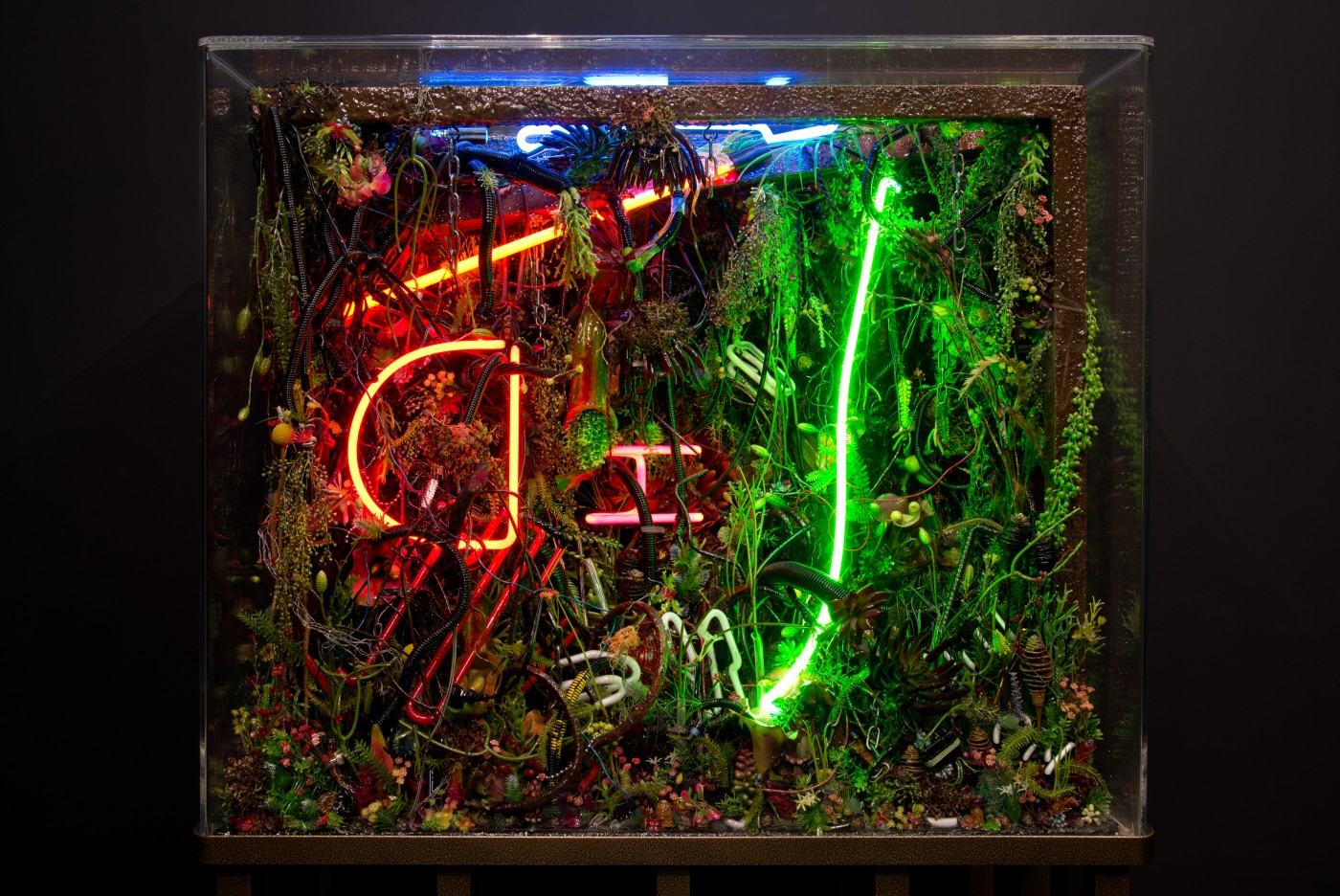 NATURE THEATER OF VIOLENT SUCCESSION  The Extinction of Neon 2</I>, 2015 (detail) Acrylic terrarium, modeled landscape, used and broken neon signs, plastic flora, gallows structure, automotive detritus, steel chains, GTO wires, found objects, insect and animal matter, polymer resin, custom aluminum stand 