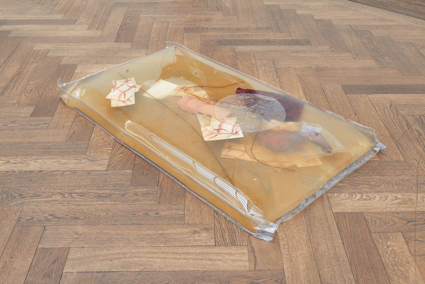 OLGA BALEMA  Become a stranger to yourself , 2017 Fabric, latex, photographs, silicone, soft pvc, steel, water 7,6 × 139,7 × 76,2 cm / 3 x 55 x 30 in - High Art Gallery Paris