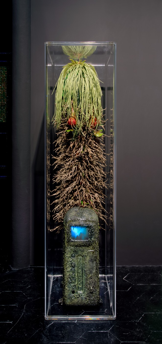 NATURE THEATER OF VIOLENT SUCCESSION  The Discovery of VHS</I>, 2015 Automotive console VHS Player, soil, sand, dried moss, polymer resin, plastic flora and botanicals, bootleg concert video (Marduk + Immortal '94), custom rounded acrylic vitrine  156 x 40 x 62 cm / 61.4 x 15.7 x 24.4 in  MAX HOOPER SCHNEIDER