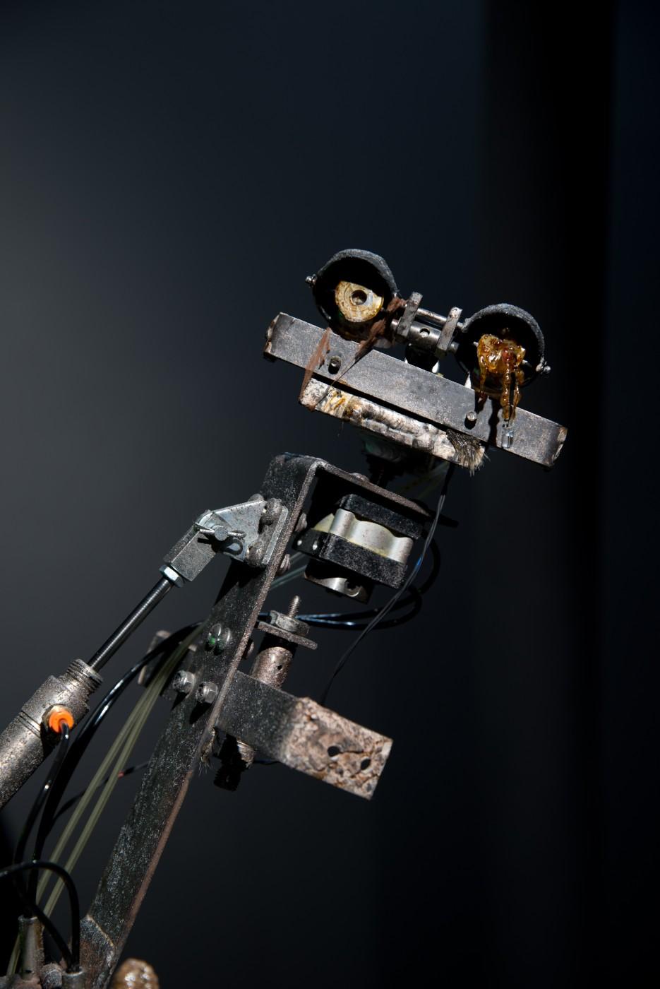 NATURE THEATER OF VIOLENT SUCCESSION  Friend (Avian Endoskeleton)</I>, 2015 (detail) Animatronic avian endoskeleton, pneumatic compressor, desiccated marine sea cucumbers, found detritus, polymer resin, UV-LED light, metal plinth 162 x 40 x 38 cm / 63.8 x 15.7 x 15 in  MAX HOOPER SCHNEIDER
