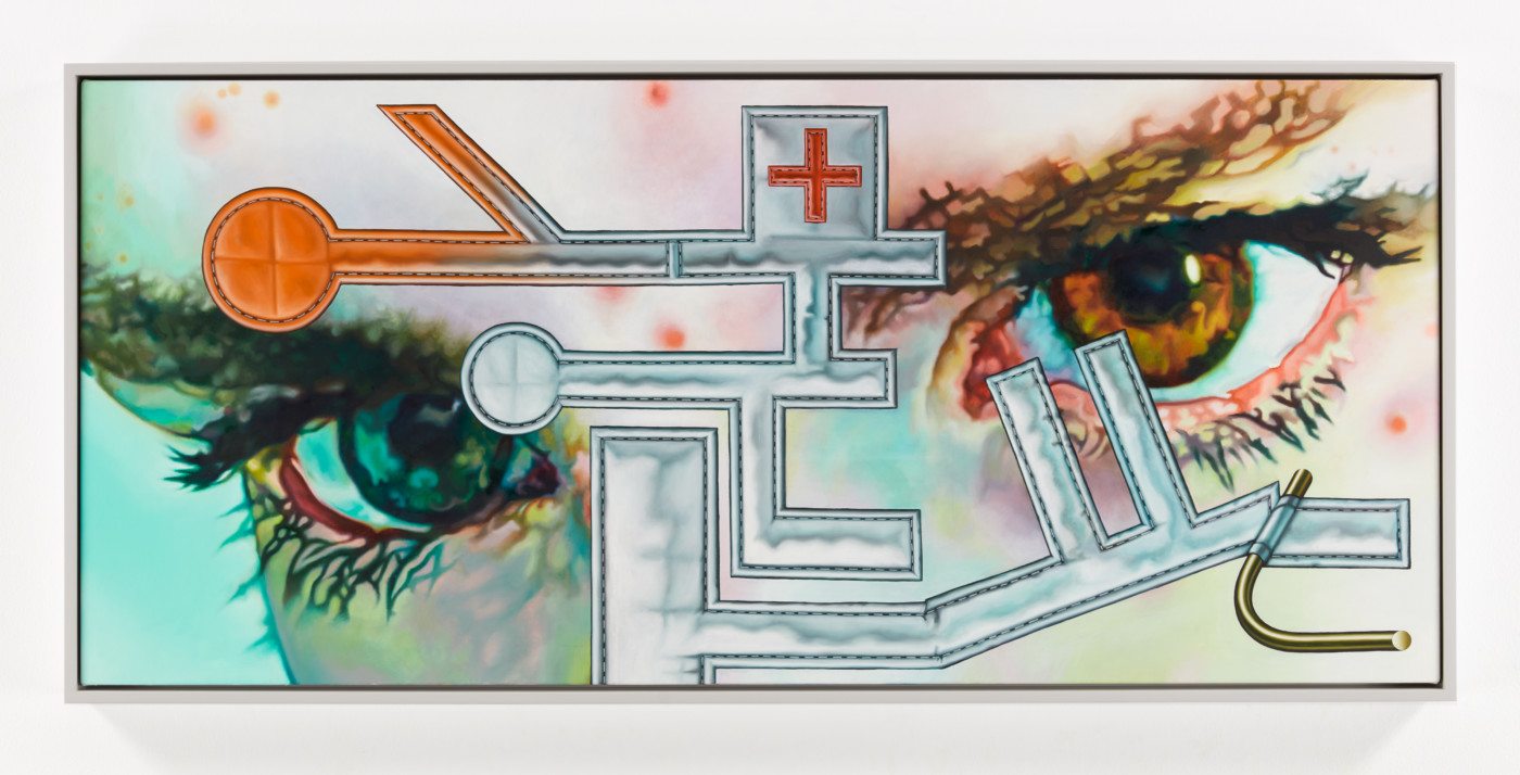 TÊTE  Homeopathic Remedies</I>, 2019 Oil on canvas 61 x 137.2 cm / 24 x 54 in  ORION MARTIN